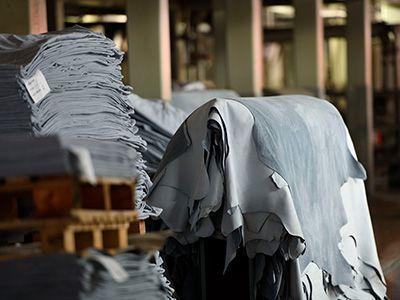 Chromgegerbte Leder haben vor der weiteren Zurichtung eine bläuliche Farbe.