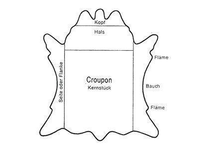 Schematische Darstellugn der Einteilung einer Haut in die Bereiche Croupon, Hals und Flanken.